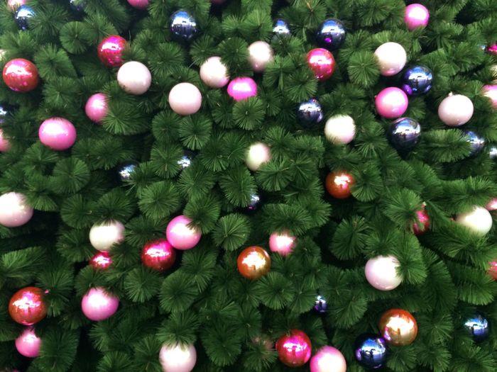 Full frame shot of ornaments on christmas tree