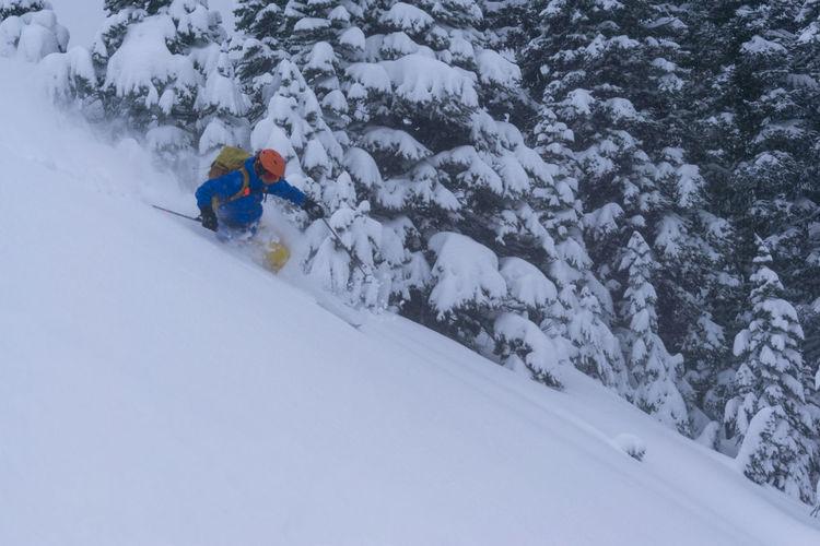 Ski Skier