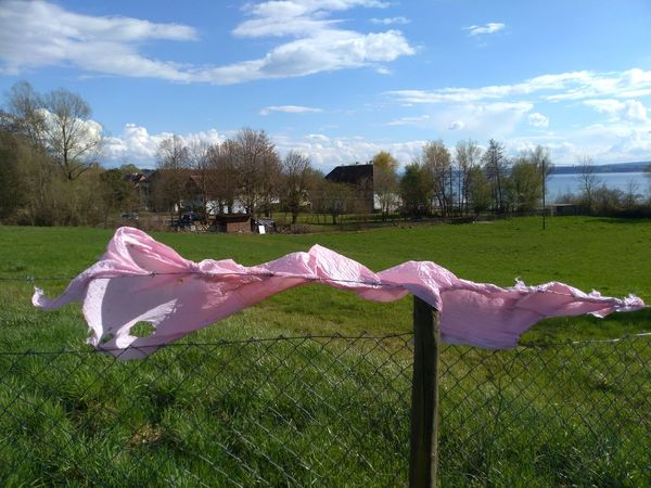 Lake Constance landscape Approaching From Another View Meadow Pink Plastic Sky Grass Cloud - Sky End Plastic Pollution