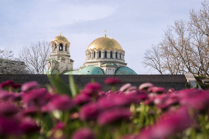 Sofia Bulgaria Architecture EyeEm Best Shots EyeEm Best Edits Place Of Worship Religion Dome Flower Flowering Plant Travel Traveling