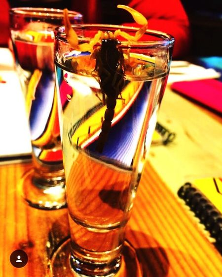 Colour Of Life Scorpion Shot Scorpion No I Didn't Drink It Nacho Daddy Gross Sick Yuck Delicious Taste It Vegas Life
