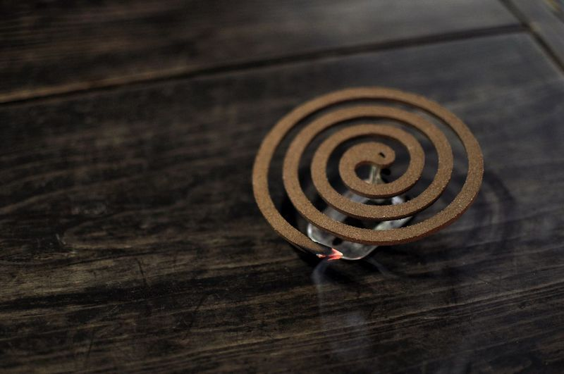 Country night / Mosquito Repellant Coil Korean Country Spiral Close-up Traditional Korea Stay Hanok Tarvel