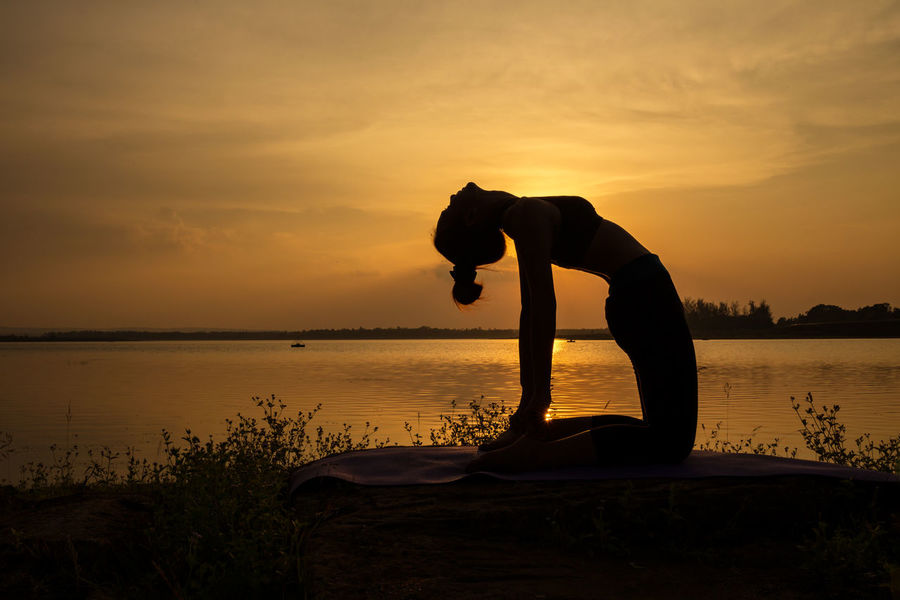 Yoga silhouette woman slim Beauty In Nature Day Healthy Lifestyle Horizon Over Water Mammal Men Nature One Person Orange Color Outdoors People People, Scenics Sea Silhouette Sky Sunset Sunset, Water Woman Yoga Yoga Practice Yoga Silhouette, Yogagirl