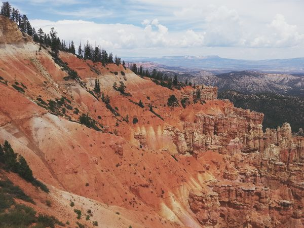 Hoodoos and Bristlecone Pine to stand the test of time. Bryce Canyon National Park, Utah. RoadTripxUSA Bryce Canyon Utah
