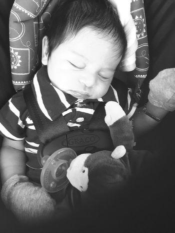 Baby Love!!! Grandson Sebastian Blessed