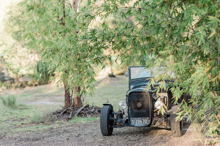 The Hotrod HotRod Car Day Environment Green Color Growth Land Landscape Nature Occupation Outdoors Plant Road Rural Scene Transportation Travel Tree Vehicle
