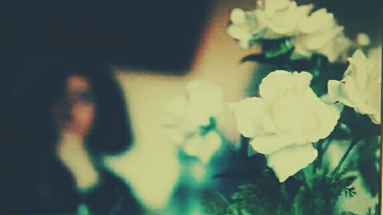 Rose♥ White Enjoying Life Vanishing Point EyeEm Best Shots Check This Out Light Kakao ♥