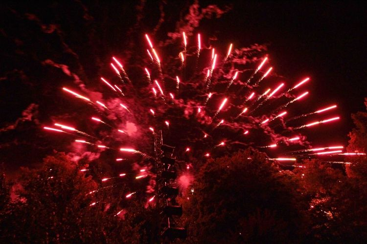 Feuerwerk im Park Illuminated Night Celebration Firework Red Motion Firework Display Event No People Exploding Arts Culture And Entertainment Long Exposure Low Angle View Light Nature Glowing Sky Outdoors Pink Color Sparks Firework - Man Made Object