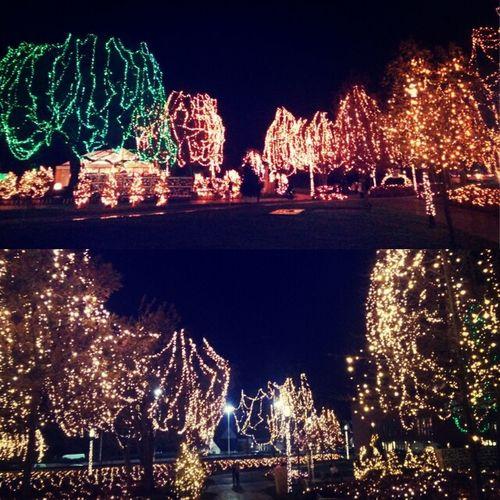 Christmas Lights Beautiful Bruges