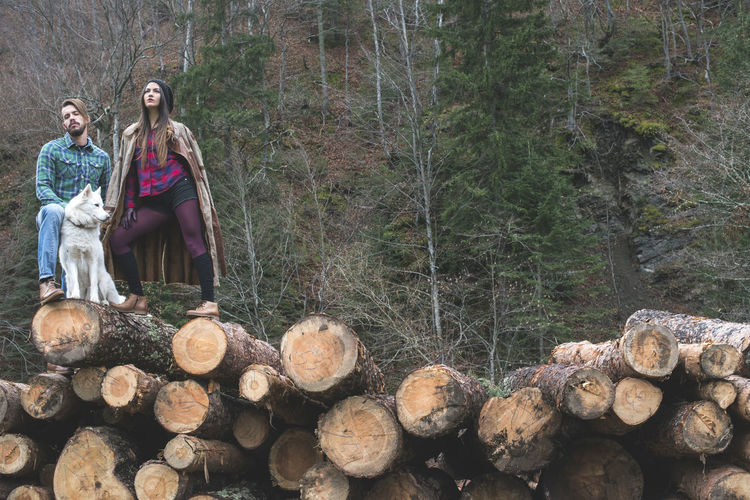 Men Young Men Girl Woman Boy Fashion Timber Woods Forest Dress Shoes Posing Dog Tree Log Real People Nature Young Adult Young Women Land Deforestation Women Firewood Wood - Material Stack Wood Leisure Activity Plant Day Lifestyles Lumber Industry Outdoors WoodLand