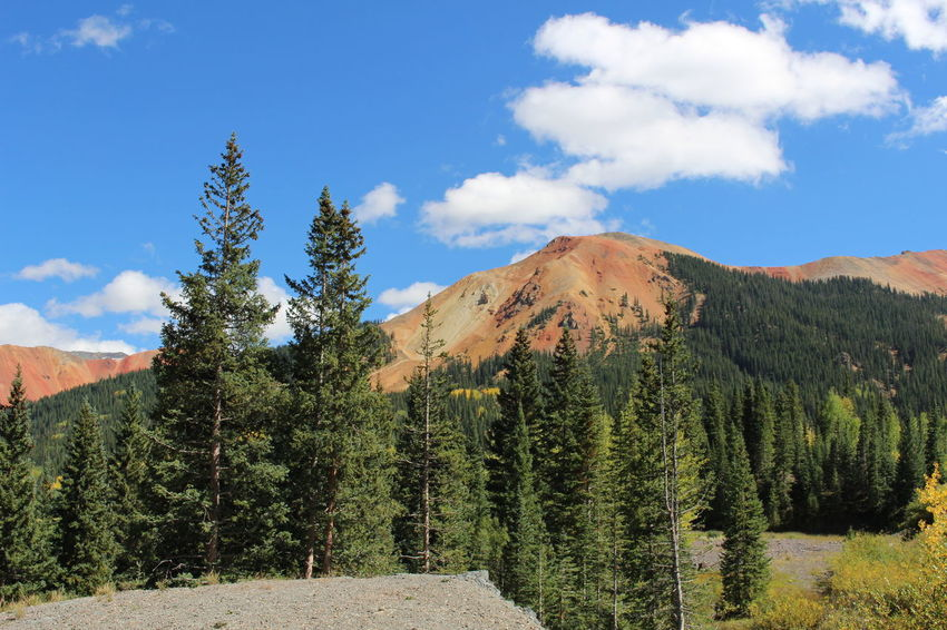 Red Mountain in Colorado Colorado Red Mountain Beauty In Nature Day Landscape Mountain Nature No People Outdoors Scenics Sky Tranquil Scene Tranquility Tree