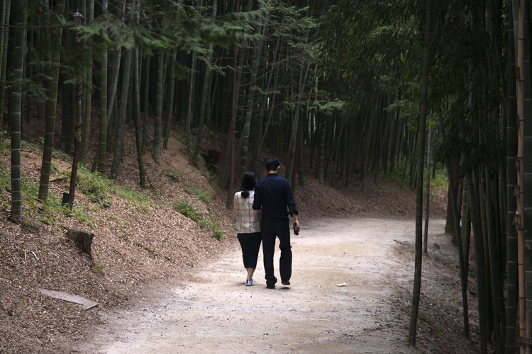 Rear View Of Couple Walking In Bamboo Grove