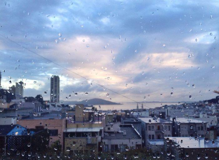 Rain, finally! The View From My Window