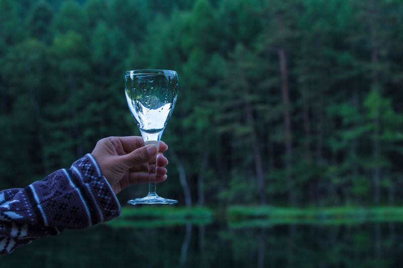 Cropped hand of woman holding wineglass against trees in forest
