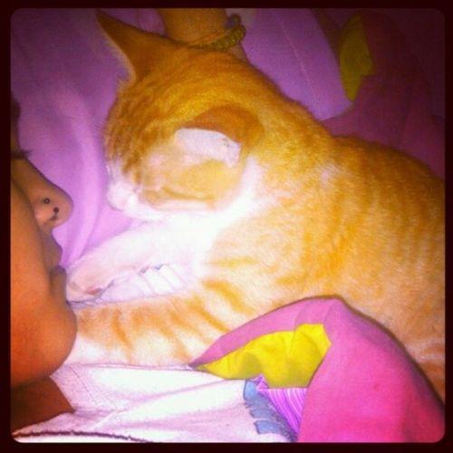 A dormirla Cazador  Love Bebuchilindo