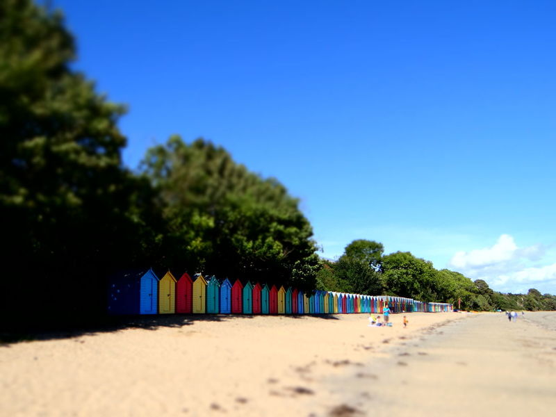beach huts in Llanbedrog Llanbedrog Beach Beach Huts Beauty In Nature Blue Clear Sky Day In A Row Multi Colored Nature Outdoors Sand Sky Summer Sunlight Tree Neon Life Colour Your Horizn