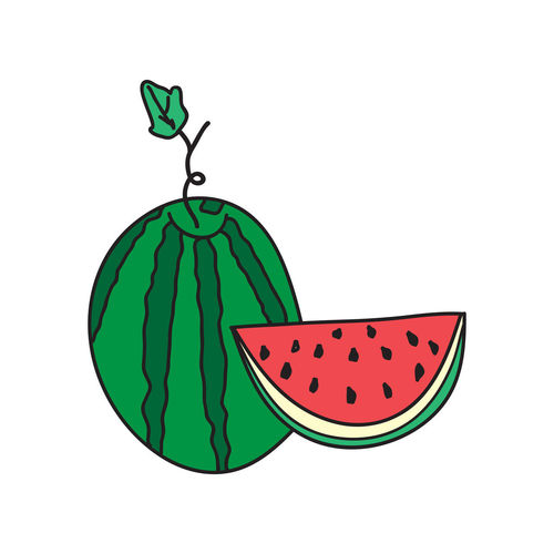 Watermelon ripe juicy fruit with leaves and slice vector illustration doodle Diet Juicy Dessert Doodle Freshness Graphic Green Red SLICE Vegetarian Art Cartoon Design Food Fresh Fruit Healthy Illustration Organic Ripe Summer Sweet Tasty Vitamin Watermelon