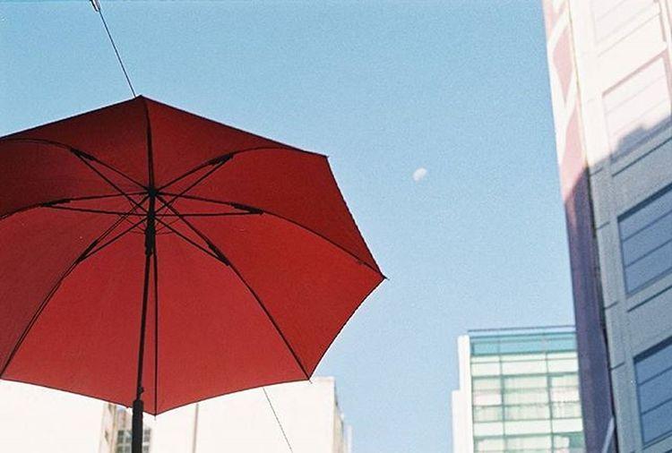 Nikonf301 Analoguephotography Fotografiacolor Fotografiacolor Colorphotography Colors Coloes Umbrella