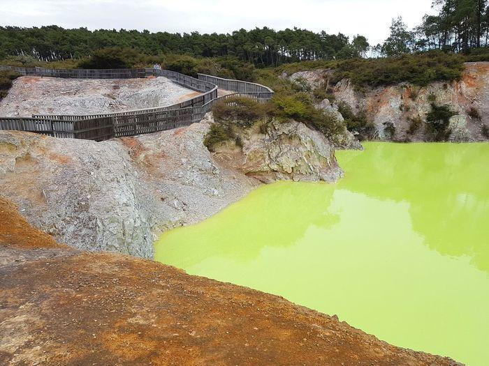 Geothermal  Geothermal Activity Rotorua  New Zealand NZ North Island Crater Volcanic Landscape Volcanic  Crater Lake Nature Sulfur  Green Lake Sulfur Lake Sulfuric