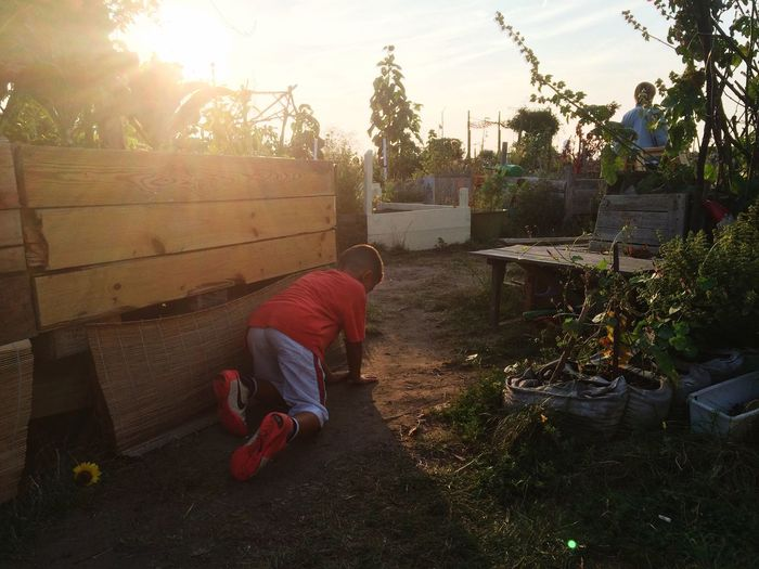 Hide And Seek Summer Garden