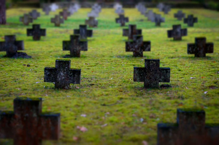 Cemetery Cemetery Close-up Cross Field Friedhof Grabstein Grabsteine Grass Headstone Headstones Headstones In A Row History Memories Military Place Of Worship Religion Soldatenfriedhöfe Spirituality Stone Material The Past Tombstone Nature Diversities