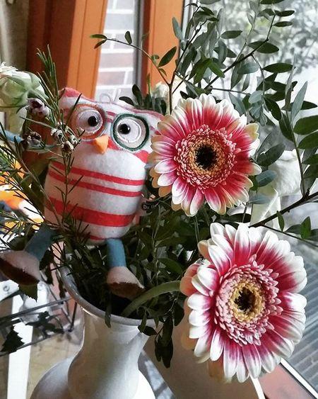 Gift Prezent Thankyou Love Wonderfull Happiness Família Kocham Kwiaty Sówka