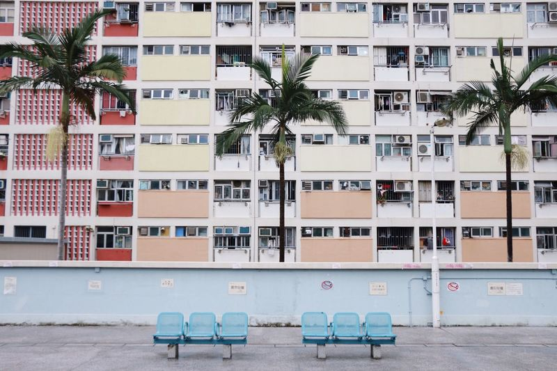 The Architect - 2018 EyeEm Awards Built Structure Architecture No People Palm Tree Rainbow City Building Exterior Building Residential District Balcony Seat City Life Outdoors wanna go there again in HongKong