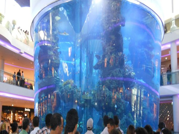 morocco mall Adult Architecture Built Structure Day Large Group Of People Mall Casablanca Men Morocco Mall People