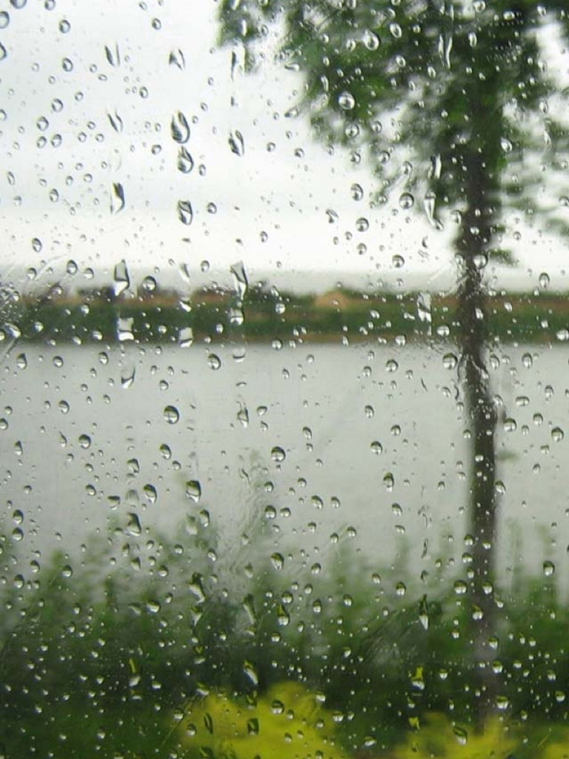 drop, wet, water, window, rain, raindrop, transparent, indoors, weather, glass - material, focus on foreground, full frame, season, backgrounds, sky, close-up, glass, droplet, water drop, monsoon