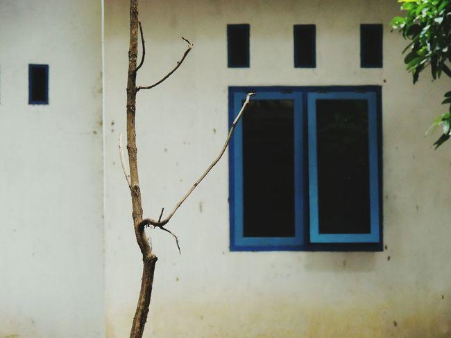 Blue Window Visit Indonesia Keraton Kasepuhan in Cirebon  , INDONESIA