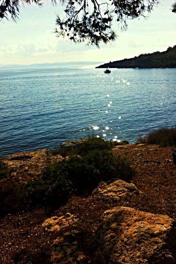 Ortunç Cunda Relaxing Taking Photos Türkiye Perfect Sun Enjoying The Sun Bence huzuru koklamak için en uygun yerdir Ege💙