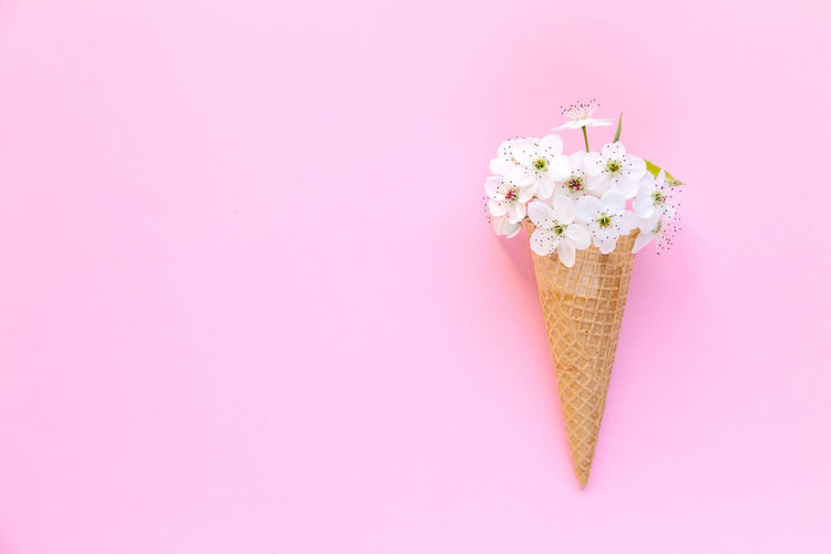 Close-up of ice cream against pink background