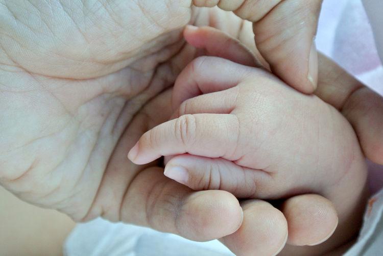 Hands Body Part