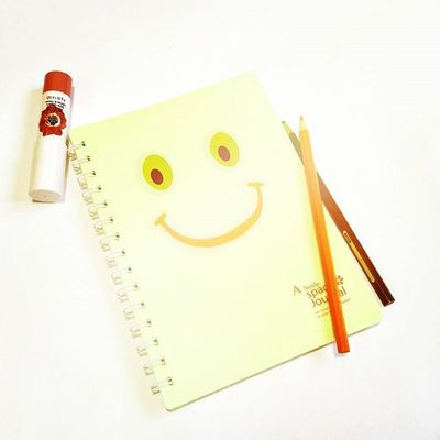 Photoproject365 July2015 Clovewebstudio Day 32 of 365 - Notebook Smile Whitewash
