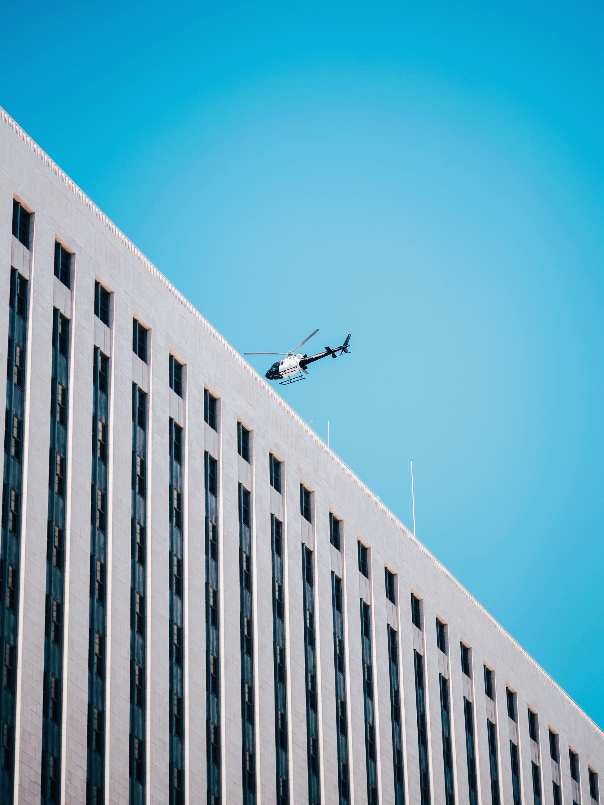 architecture, low angle view, built structure, building exterior, clear sky, day, blue, outdoors, airplane, flying, no people, city, modern, sky, animal themes
