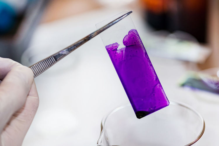 Cropped hand examining chemical on slide in laboratory