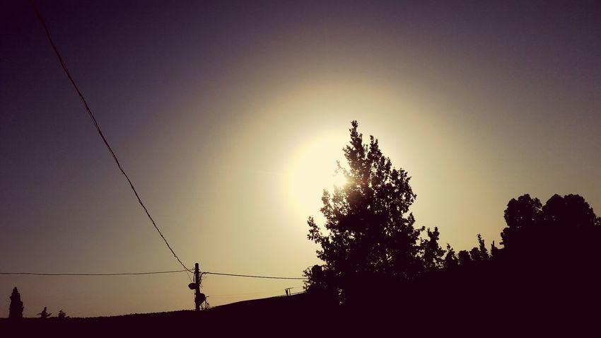 Sun Rays EyeEm Selects Beautiful ♥ Sunset Sun Beautiful Nature Beautiful Nature Nature Photography Nature Collection 😍😌😊 ☉☉ ☉🌞🌞☉ ☉☉☉ 🌞🌞🌞🌞☀☀☀😊😄😄😄😄 Nature Photograhy Light Amira💘