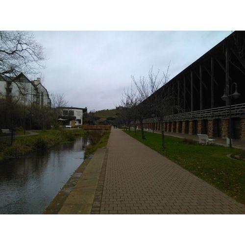 Nofilter Bad Dürkheim Park