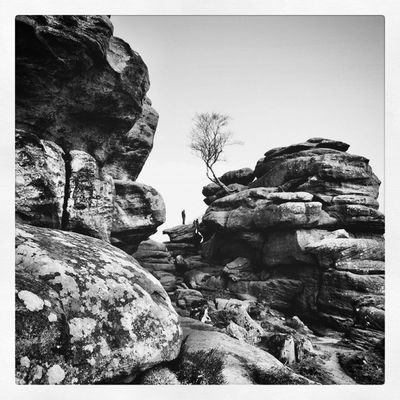 Brimhamrocks Yorkshire Capturingbritain_bnw Uk_potd Ukpotd Princely_bw Allwhatisbeautiful_bnw Bnw_nature Bw Bnwbutnot Igbw Fiftyshades_of_nature