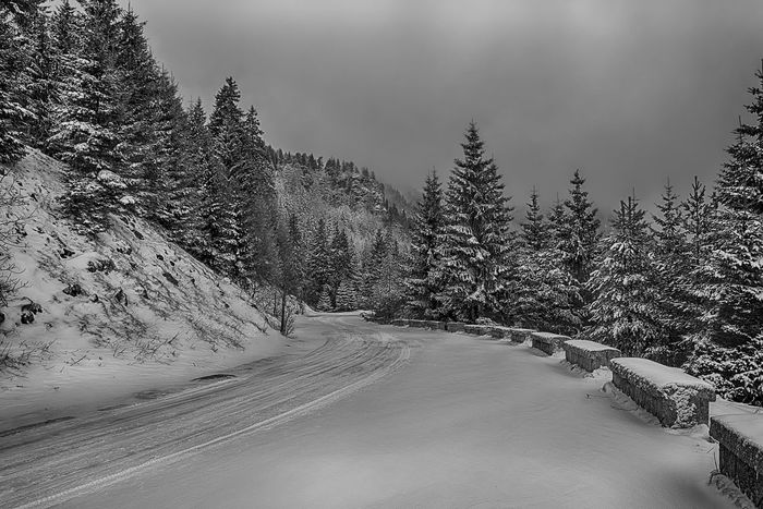 1400 Beauty In Nature Cloud - Sky Cold Temperature Covering Diminishing Perspective Landscape Nature Non-urban Scene Road Scenics Season  Sky Snow The Way Forward Tranquil Scene Tranquility Tree Vanishing Point Weather Winter