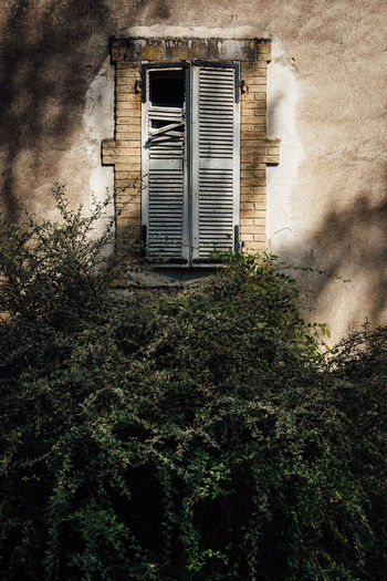 Shutters Abandoned Architecture Broken Building Building Exterior Built Structure Closed Day Green Color Growth House Ivy Low Angle View Nature No People Old Outdoors Plant Residential District Shutter Tree Wall - Building Feature Window