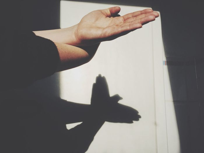 Cropped hands making bird shadow on wall
