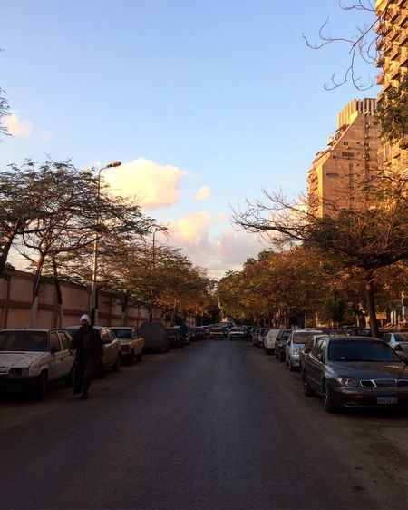 Maadi Egypt Street Sky Cloud - Sky Man Poorpeople One Person Tree Car Transportation Road Land Vehicle Mode Of Transport The Way Forward Outdoors Bare Tree City Building Exterior Sunset EyeEm Best Shots EyeEm Gallery Day Architecture Nature
