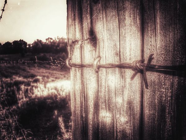 Hope all my friend's out there has a happy Barbed Wire Wednesday Barbwire Wednesday Show Me Your Sepia For My Friends That Connect :-)