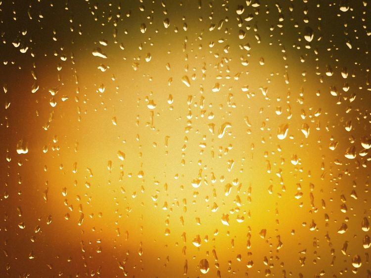 Raindrops in Focus Wet Drop Backgrounds No People Water Full Frame Rain RainDrop Yellow Gold Colored Raindrops Raindrops On My Window Backlight