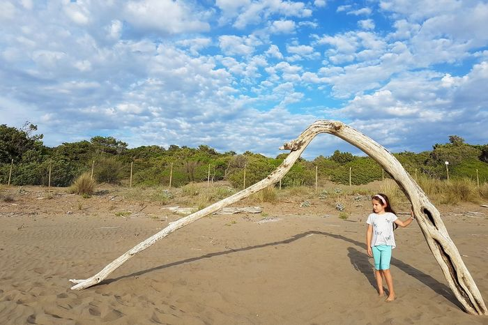 Little girl standing on the beach under a wood branch arch with blue cloudy sky Sandy Beach Wood - Material Branch Dead Branch Arch Natural Arch Sunny Day Beach View Maremma Tuscany Mediterranean  Beauty In Nature Real People Summertime Italy Relaxing Wood Lifestyle Travel Vacation Holiday Tranquil Scene Child Childhood Full Length Beach Sand Summer Sand Dune Beach Holiday