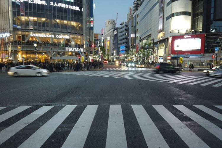 Japan Tokyo Street Urban People Shibuya Travel Destinations Evening Night Busy Street Shibuya Crossing Shibuyacrossing Landmark Nightlife Neon Travel Japan Travel Japan Trip  City Transportation Architecture Road Road Marking Building Exterior Sign Motor Vehicle Car Built Structure Mode Of Transportation Crosswalk Marking Symbol Crossing Zebra Crossing Illuminated City Street City Life No People Outdoors Office Building Exterior