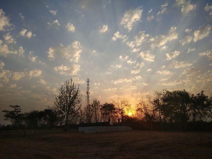 Original Photo No Edit/no Filter Sunrise Clear Sky Sun Tree Sky Cloud - Sky Dramatic Sky Tranquil Scene Atmospheric Mood