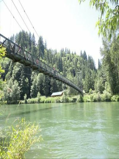 Arch Bridge Beauty In Nature Bridge Canal Connection Day Engineering Green Green Color Growth Idyllic Lush Foliage Nature No People Outdoors Plant River Scenics Sky Tranquil Scene Tranquility Travel Destinations Tree Under The Bridge Water