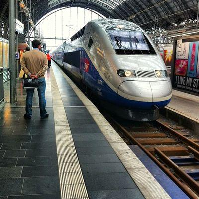 TGV TGV Hauptbahnof Frankfurt Frakfurtcity Frankfurt Am Main Frankfurt's Life Frankfurtlovers Train Train Station